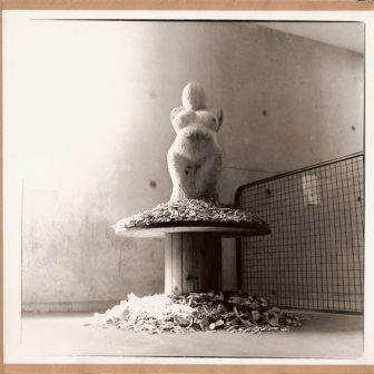 Vénus bois 1999, sculpture de Vivien Lacueille